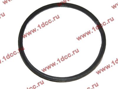 Кольцо уплотнительное выпускного коллектора H2 HOWO (ХОВО) VG260110162 фото 1 Благовещенск