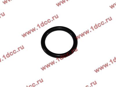 Кольцо уплотнительное форсунки резиновое H2/H3 HOWO (ХОВО) VG609070080 фото 1 Благовещенск