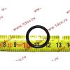 Кольцо уплотнительное форсунки резиновое H2/H3 HOWO (ХОВО) VG609070080 фото 2 Благовещенск