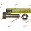 Болт M14х45 карданный с гайкой H2/H3 HOWO (ХОВО) Q151C1445 фото 2 Благовещенск