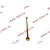 Болт центральный рессоры задней без бобышки H2/H3/SH HOWO (ХОВО) WG9638520018+013 фото 3 Благовещенск