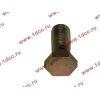 Болт пустотелый М12х1,25 (штуцер топливный) H HOWO (ХОВО) 90003962607 фото 3 Благовещенск