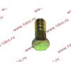 Болт пустотелый М10х1,0 (штуцер топливный) H HOWO (ХОВО) 81500070054 фото 3 Благовещенск