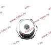Датчик давления масла H3 HOWO (ХОВО) VG1540090035/1 фото 3 Благовещенск